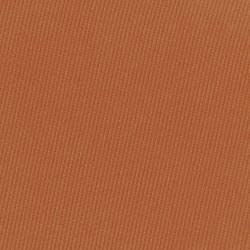 Pressed Pigment Feather Edition - Cinnamon - Nabla